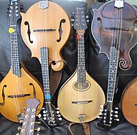 mandolins-various-styles-one-picture